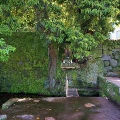 上の川湧水