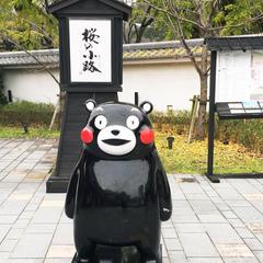 熊本城桜の小路