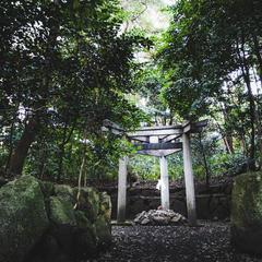 木嶋坐天照御魂神社(蚕ノ社)