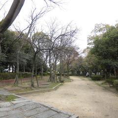 大物川緑地