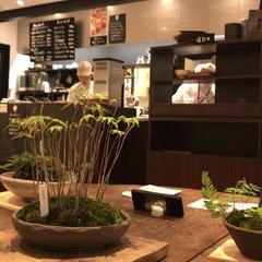 菜の花ムーンカフェ