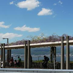 諏訪湖SA (上り)