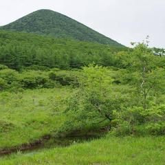 沼ッ原湿原