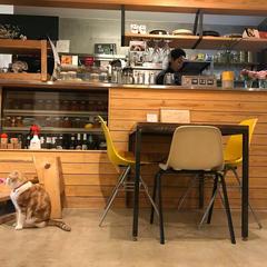 DICE CAFE