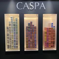 CASPA ebisu color head spa
