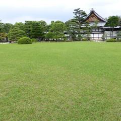 二条城 本丸庭園