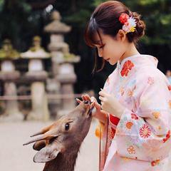 レンタル着物 奈良公園 /奈良富士きもの