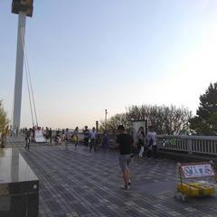 葛西臨海公園バーベキュー広場