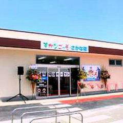 すかなごっそ・さかな館 長井漁業協同組合 朝獲れ 鮮魚 魚介類
