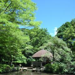 県立東高根森林公園パークセンター