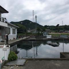 元田養鱒場