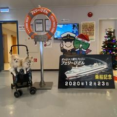 東京港フェリーターミナル