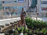 横須賀中央駅の写真・動画_image_127228