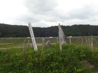 剣神社の写真・動画_image_134703