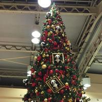 上野駅の写真・動画_image_109282