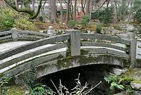 園城寺の写真・動画_image_75919