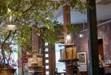 カフエマメヒコ三軒茶屋店