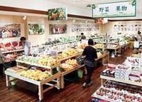 柿の郷くどやまの写真・動画_image_69217