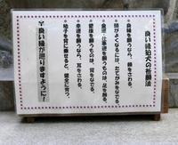 日光二荒山神社の写真・動画_image_199485
