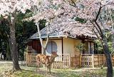 料理旅館 江戸三