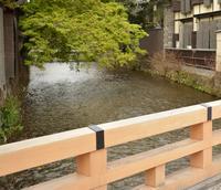 祇園白川の写真・動画_image_423317