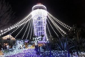 私の大好きな場所、江ノ島♡デートプランにいかがですか?