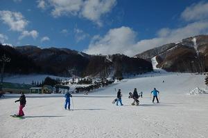 都内から日帰りで行けるスキーツアー