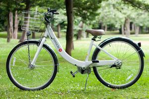 自転車で円山満喫プラン
