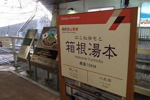 温泉から紅葉が見たい!箱根弾丸日帰りツアー