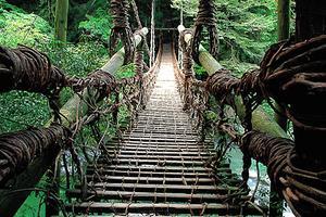 自然がいっぱい徳島県!