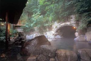 箱根〜芦ノ湖をぐるり。日帰り温泉と美術館と景色を楽しむ。