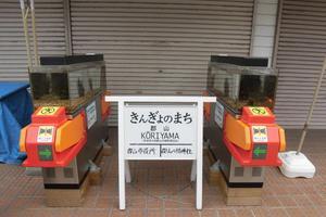 やりすぎ~!?(笑)がおもしろい奈良のまちおこし