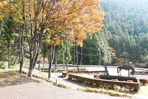 群馬県川場村の秋を満喫