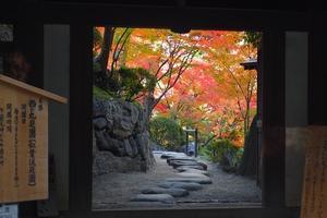 秋の和歌山城と「和」を楽しむ1日
