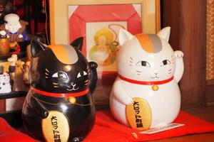 [浅草]浅草まち歩き 招き猫と仲良くなれるかも♪