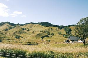 秋のオススメ!西日本有数の砥峰高原ススキ