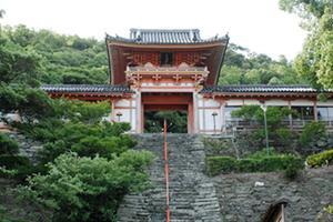 紀三井寺生まれの建築士さんがオススメする和歌浦・紀三井寺の定番ツアー