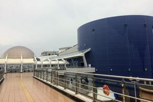 名古屋雨の日デートプラン(水族館編)