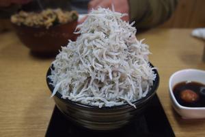 海水浴だけじゃない!!和歌山市加太の美味しいもの探し♪