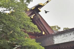 開運…!名古屋周辺のご利益スポットめぐり