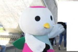 色鮮やかな花が咲き誇る花博記念公園鶴見緑地