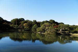 紅葉、天然温泉、牧場グルメ…これ、みん〜な東京の駒込で堪能できるんです!