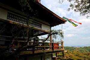 嵐山・嵯峨野の珍しい楽しみ方〜京都一の絶景ポイントと外国人人気抜群の人間動物園!
