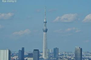 東京二大鉄塔を眺める!江戸まち散策とお台場エリア♪