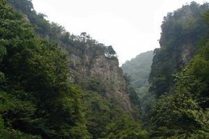 東京唯一の村!でキャンプ ロッジ神戸岩