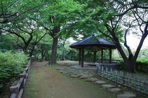 知る人ぞ知る東横線沿い「大倉山」の魅力をご紹介