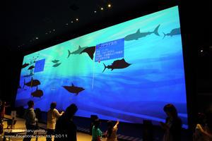 大自然超体感ミュージアム「Orbi」で大自然を体験しよう!/横浜