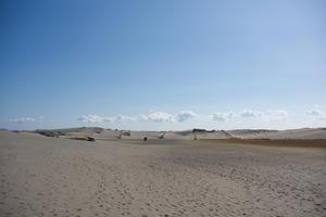 浜松と云えばうなぎ・・・というのはありきたり。なんと、映画「清須会議」のロケ地の砂丘もあるよ!