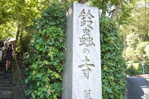 紅葉の名所・嵐山観光&願いごとが叶うと有名な鈴虫寺へ。