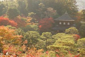 京都の紅葉と言えば!そうだ 銀閣寺、行こう。
